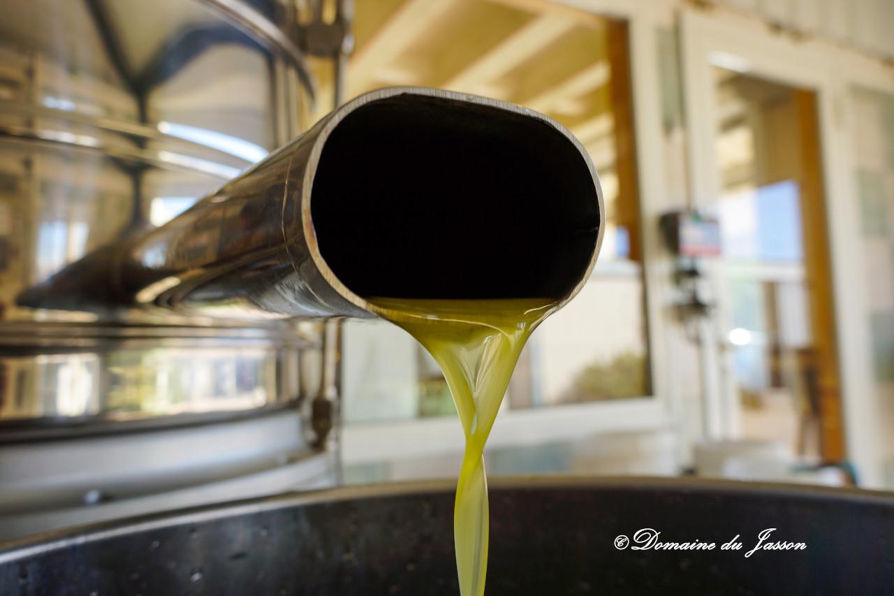 domaine-du-jasson-accueil-huiles-slide-2